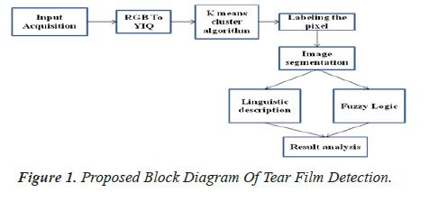 biomedres-Film-Detection