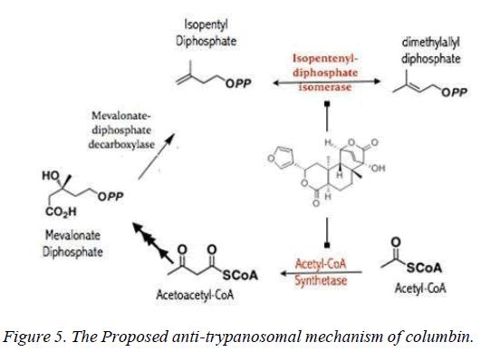 biomedres-mechanism