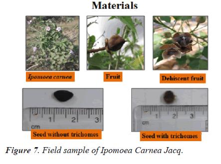 biomedres-sample