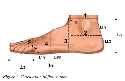 Bbiomedres-foot-volume