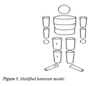 Bbiomedres-hanavan-model