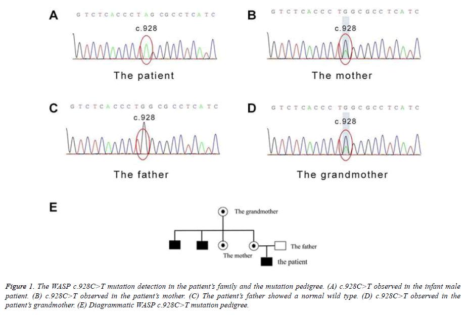 biomedical-research-mutation
