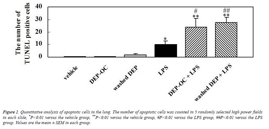 biomedical-research-quantitative