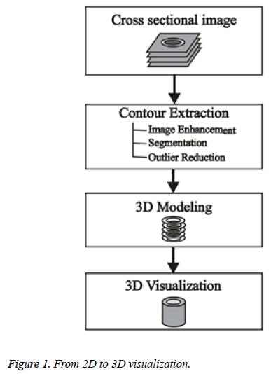 biomedres-3D-visualization