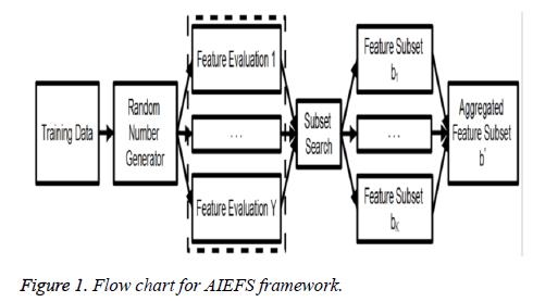 biomedres-AIEFS-framework