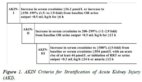 biomedres-AKIN-Criteria
