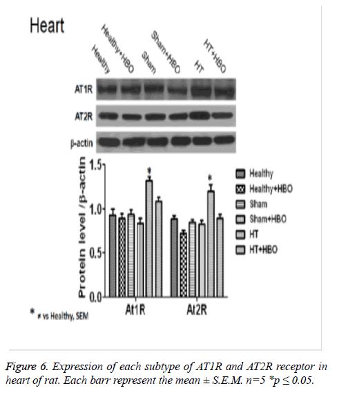biomedres-AT1R-AT2R-receptor