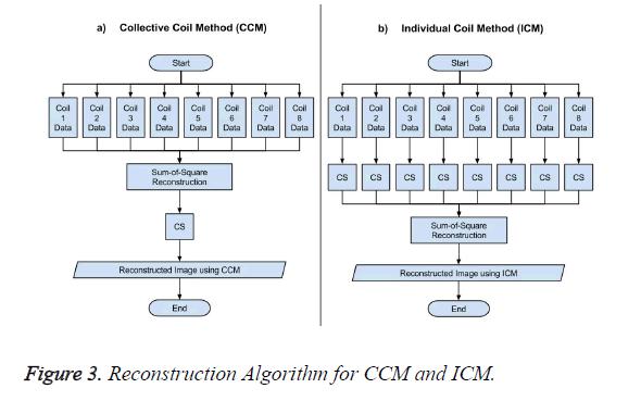 biomedres-Algorithm-CCM-ICM
