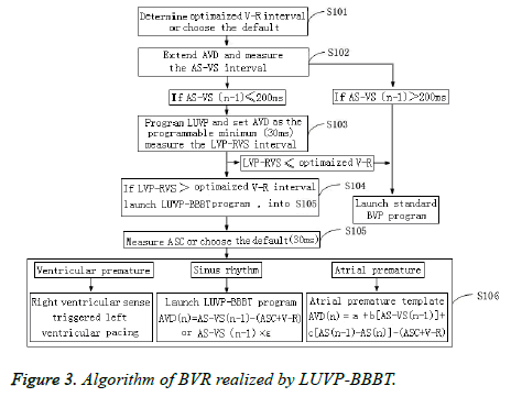 biomedres-Algorithm-LUVP-BBBT