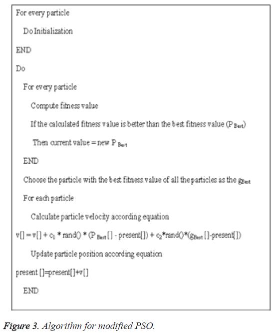biomedres-Algorithm-modified-PSO