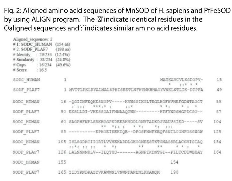 biomedres-Aligned-amino-acid-identical-residues