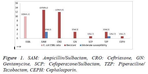 biomedres-Ampicillin-Sulbactam