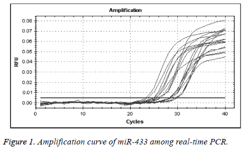 biomedres-Amplification-curve