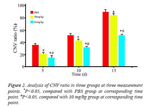 biomedres-Analysis-CNV