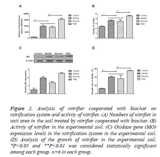 biomedres-Analysis-nitrifier