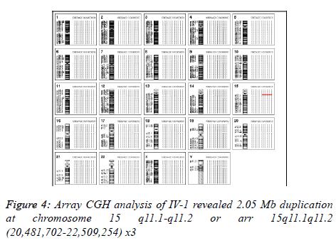 biomedres-Array-CGH-analysis