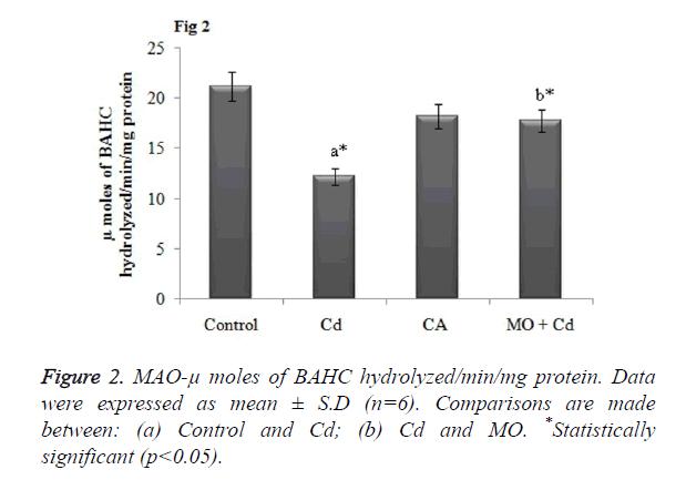 biomedres-BAHC-hydrolyzed