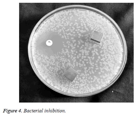 biomedres-Bacterial-adhesion
