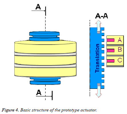biomedres-Basic-structure