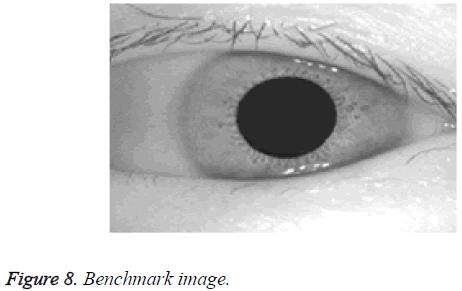 biomedres-Benchmark-image