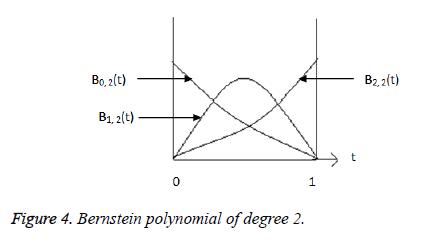biomedres-Bernstein-polynomial