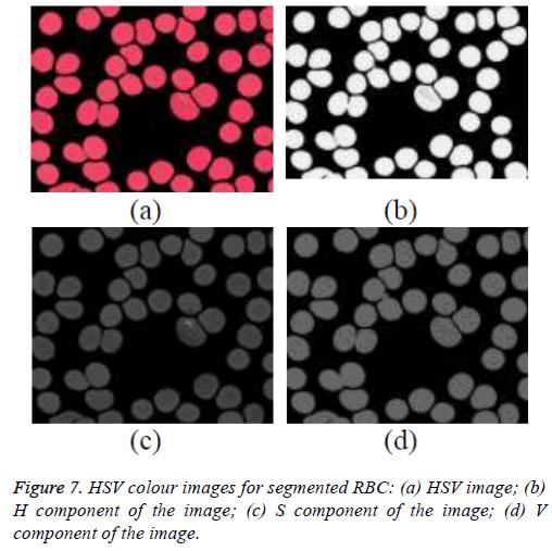 biomedres-Binary-image