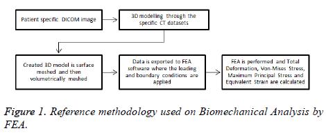 biomedres-Biomechanical-Analysis