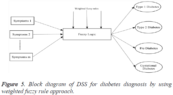 biomedres-Block-diagram-DSS