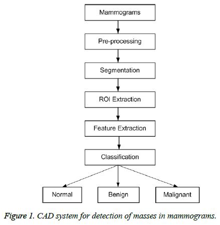 biomedres-CAD-system