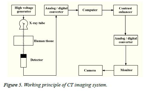 biomedres-CT-imaging