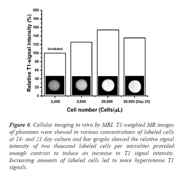 biomedres-Cellular-imaging