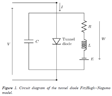 biomedres-Circuit-diagram