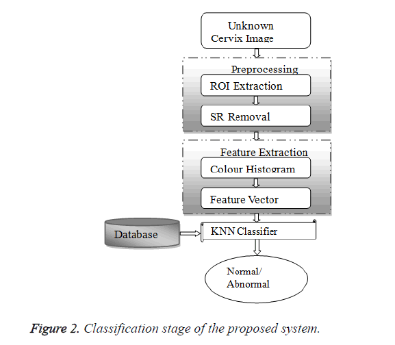 biomedres-Classification-stage
