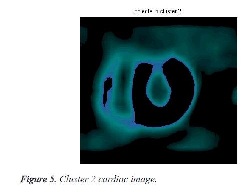 biomedres-Cluster