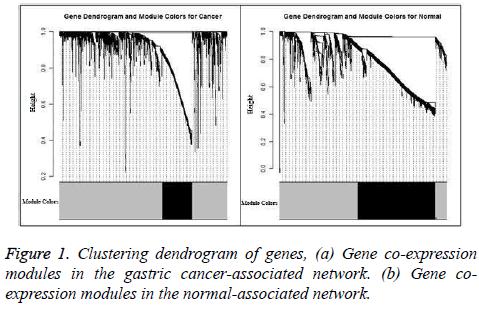 biomedres-Clustering-dendrogram