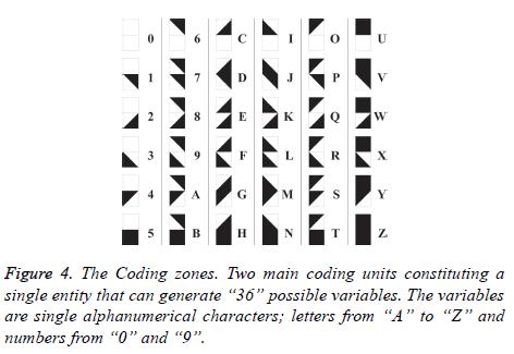 biomedres-Coding-zones