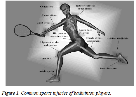 biomedres-Common-sports