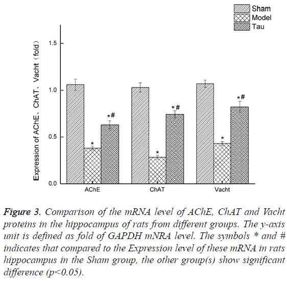 biomedres-Comparison-mRNA-level