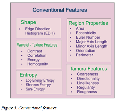 biomedres-Conventional-features
