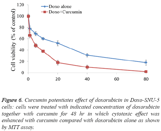 biomedres-Curcumin-potentiates-effect