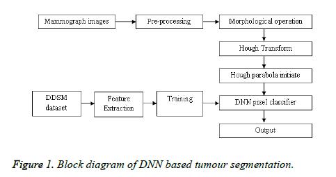 biomedres-DNN-based-tumour