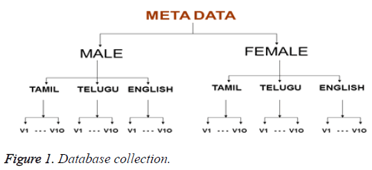 biomedres-Database-collection