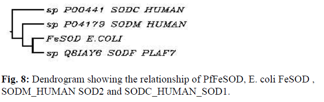 biomedres-Dendrogram-relationship-HUMAN