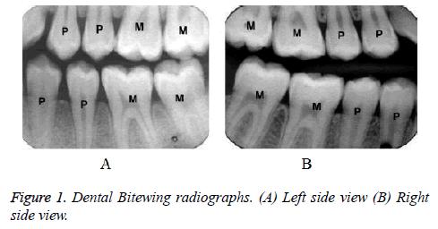 biomedres-Dental-radiographs