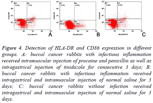 biomedres-Detection-HLA-DR