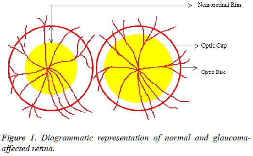 biomedres-Diagrammatic-representation