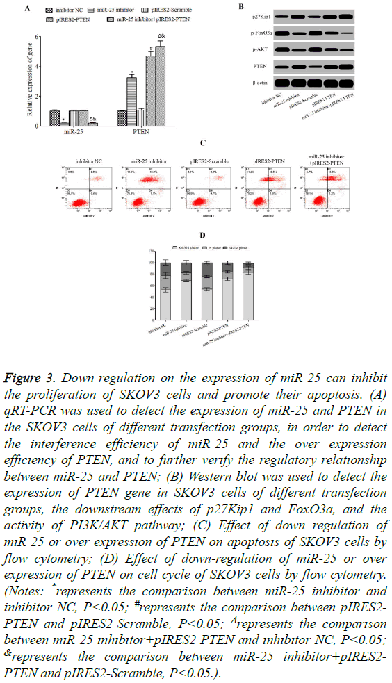 biomedres-Down-regulation-expression