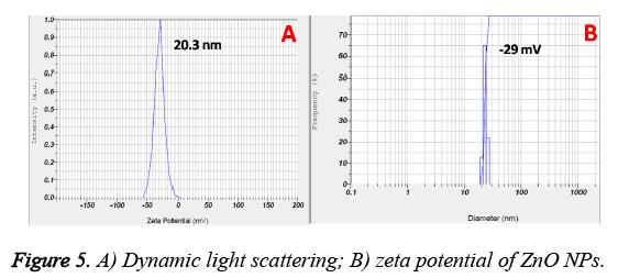 biomedres-Dynamic-light-scattering