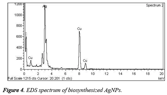 biomedres-EDS-spectrum-biosynthesized