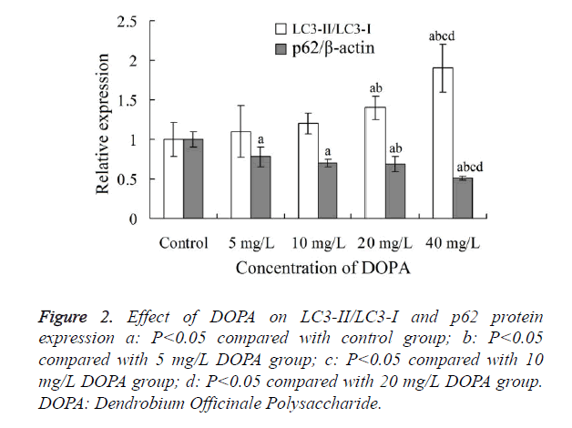 biomedres-Effect-DOPA